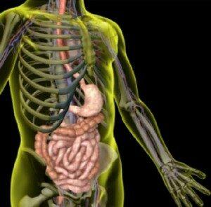 Симптомы патологии кишечника