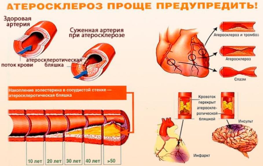 Народные средства и средства фитотерапии
